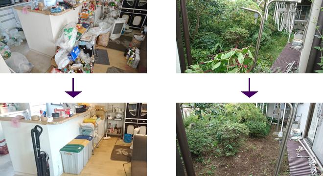 台所ゴミ整理+庭の雑草取り